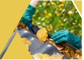 Gutters Clog-Free
